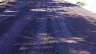Siguiendo con las obras de pavimento proyectadas para nuestra localidad, en estos momentos se esta culminando la calle Matheu entre Malvinas Argentinas y Máximo Pereyra, días atrás se asfalto la […]